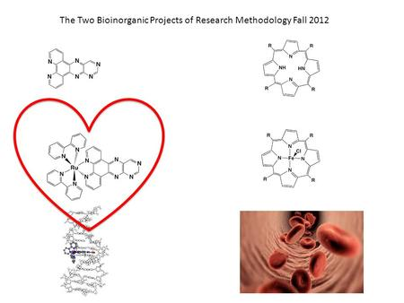 The Two Bioinorganic Projects of Research Methodology Fall 2012.