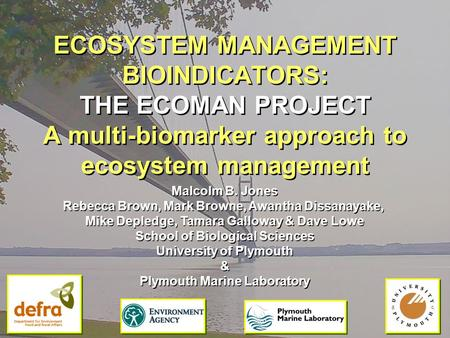 ECOSYSTEM MANAGEMENT BIOINDICATORS: THE ECOMAN PROJECT A multi-biomarker approach to ecosystem management Malcolm B. Jones Rebecca Brown, Mark Browne,