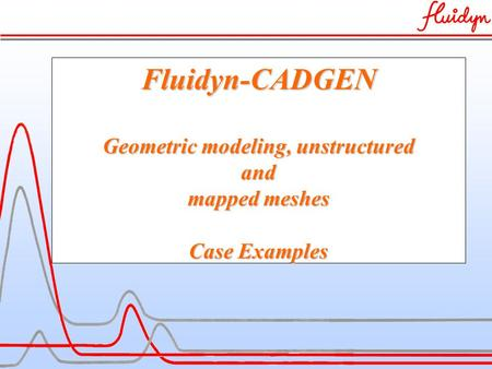 Fluidyn-CADGEN Geometric modeling, unstructured and mapped meshes Case Examples.