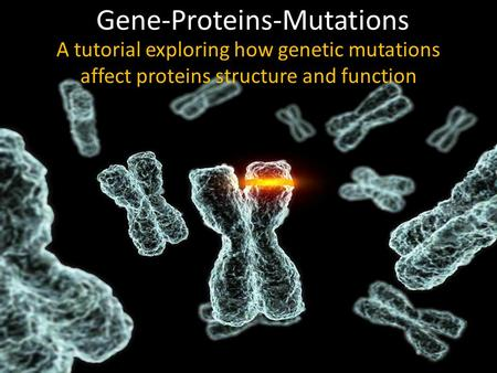 Gene-Proteins-Mutations A tutorial exploring how genetic mutations affect proteins structure and function.