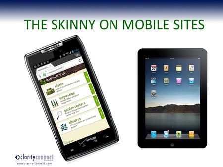 THE SKINNY ON MOBILE SITES. Here to stay, unlike…