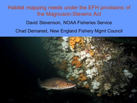Habitat mapping needs under the EFH provisions of the Magnuson-Stevens Act David Stevenson, NOAA Fisheries Service Chad Demarest, New England Fishery Mgmt.