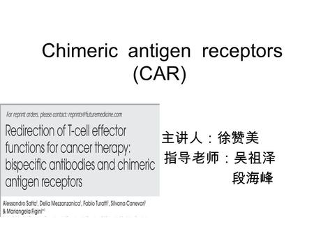 Chimeric antigen receptors (CAR)