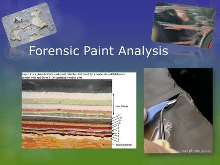 Forensic Paint Analysis. How can paint tell a story?? Able to associate an individual or vehicle with a crime scene Hit and Run casesdried paint/paint.