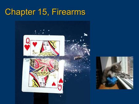 Chapter 15, Firearms.