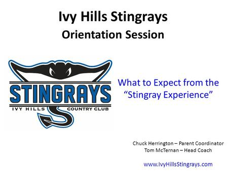 "What to Expect from the ""Stingray Experience"""
