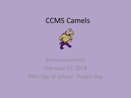 CCMS Camels Announcements February 12, 2014 99th Day of School - Purple Day.