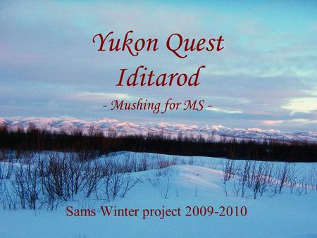 Yukon Quest Iditarod - Mushing for MS - Sams Winter project 2009-2010.