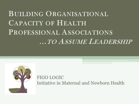 B UILDING O RGANISATIONAL C APACITY OF H EALTH P ROFESSIONAL A SSOCIATIONS... TO A SSUME L EADERSHIP FIGO LOGIC Initiative in Maternal and Newborn Health.