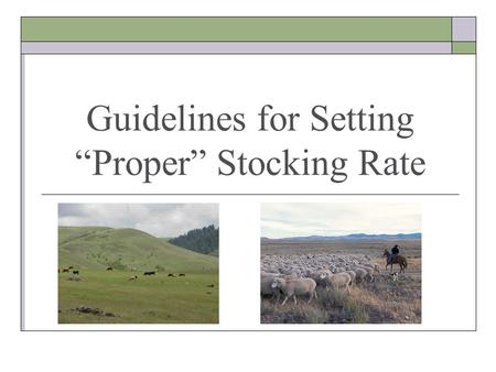 Guidelines for Setting Proper Stocking Rate. Natural & Human Resources Grazing Management Decisions Community Response Climate Topography Veg. Community.