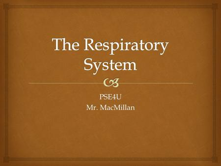 PSE4U Mr. MacMillan. The Conductive Zone Nose, pharynx, trachea, bronchi, bronchioles The Respiratory Zone Respiratory bronchioles, alveolar ducts, alveoli.