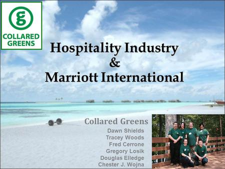 Hospitality Industry & Marriott International Collared Greens Dawn Shields Tracey Woods Fred Cerrone Gregory Losik Douglas Elledge Chester J. Wojna.