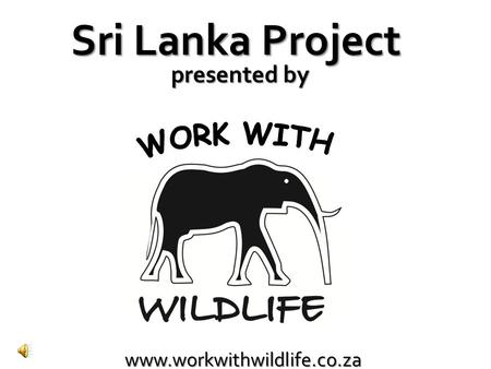 Www.workwithwildlife.co.za Sri Lanka Project presented by.
