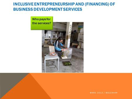INCLUSIVE ENTREPRENEURSHIP AND (FINANCING) OF BUSINESS DEVELOPMENT SERVICES ©HHS 2013 / MOLENAAR Who pays for the services?