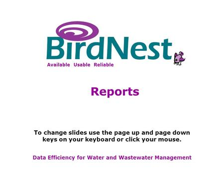 BirdNest Services Available Usable Reliable Data Efficiency for Water and Wastewater Management Reports To change slides use the page up and page down.