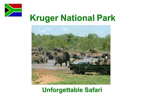 Kruger National Park Unforgettable Safari. It was a long road to Mpumalanga Province where Kruger National Park is located. But the weather was nice and.