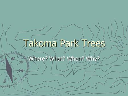 Takoma Park Trees Where? What? When? Why?. Parameters 2.5 square miles 2.5 square miles 42 miles of road 42 miles of road 17,000 residents 17,000 residents.