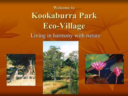 Welcome to Kookaburra Park Eco-Village Living in harmony with nature.