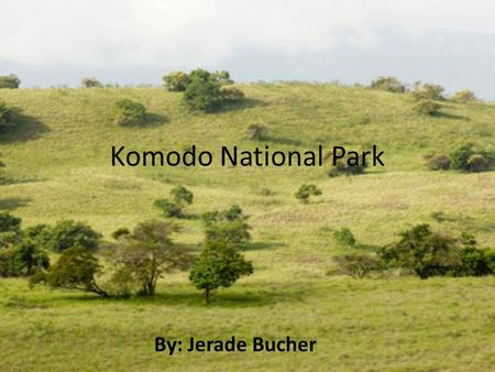 Komodo National Park By: Jerade Bucher. Komodo National Park was made a world heritage site in 1992.