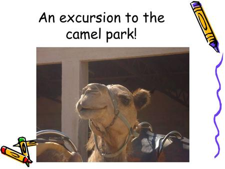 An excursion to the camel park!. Introduction The pupils of B Engomi Primary School in Cyprus had a fantastic day trip to the camel park a few days ago.