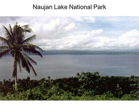 Naujan Lake National Park. A. Historical Background Naujan Lake was named after the municipality of Naujan, the largest municipality in the province of.