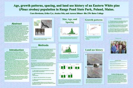 Age, growth patterns, spacing, and land use history of an Eastern White pine (Pinus strobus) population in Range Pond State Park, Poland, Maine. Cara Howieson,