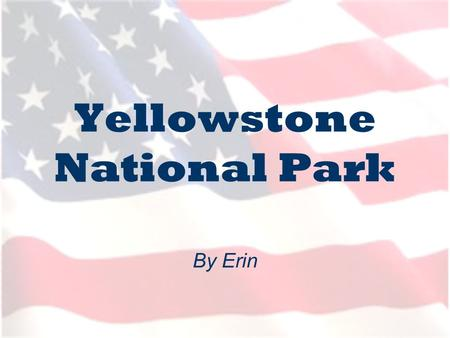 Yellowstone National Park By Erin. Where is Yellowstone? Yellowstone lies in the northern American States, with: - 96% in Wyoming 3% in Montana and 1%