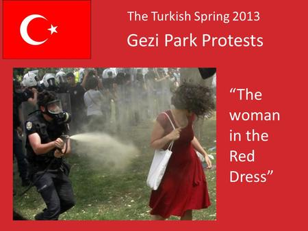 Gezi Park Protests The Turkish Spring 2013 The woman in the Red Dress.
