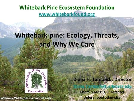 Whitebark pine: Ecology, Threats, and Why We Care Willmore Wilderness Provincial Park Whitebark Pine Ecosystem Foundation www.whitebarkfound.org Diana.