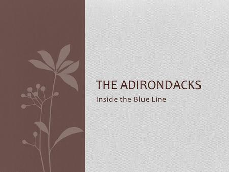 Inside the Blue Line THE ADIRONDACKS. Primary Industries Adirondack Statistics Adirondack State Park - 6 Million Acres Adirondack Forest Preserve -