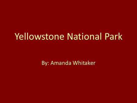 Yellowstone National Park By: Amanda Whitaker. Why Yellowstone? One of my favorite vacation spots It is the most unique and interesting place I have ever.