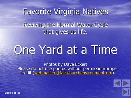 Favorite Virginia Natives Reviving the Normal Water Cycle that gives us life. One Yard at a Time Photos by Dave Eckert Please do not use photos without.
