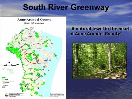 South River Greenway A natural jewel in the heart of Anne Arundel County.