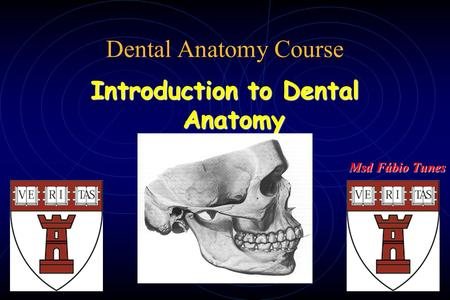 Dental Anatomy Course Introduction to Dental Anatomy Msd Fábio Tunes.
