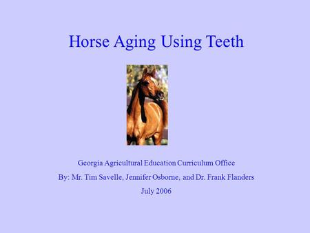 Horse Aging Using Teeth