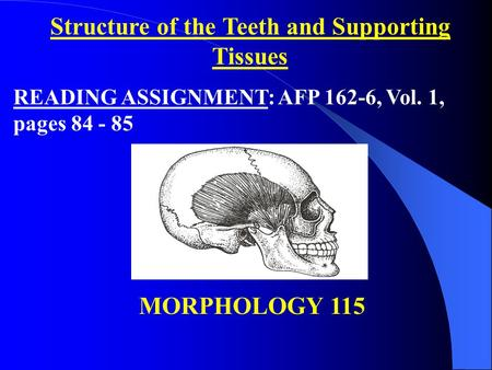 Structure of the Teeth and Supporting Tissues