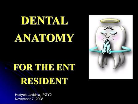 DENTAL ANATOMY FOR THE ENT RESIDENT Hedyeh Javidnia, PGY2