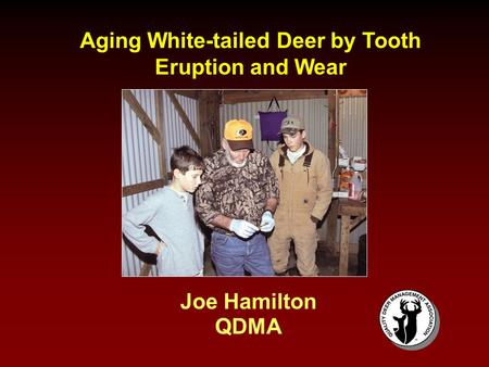 Aging White-tailed Deer by Tooth Eruption and Wear