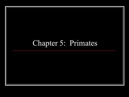 Chapter 5: Primates.