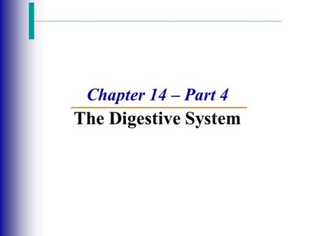 Chapter 14 – Part 4 The Digestive System