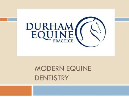 MODERN EQUINE DENTISTRY. Why Equine Dentistry? Routine dental care and oral health are important for your horses health. Periodic examination for dental.