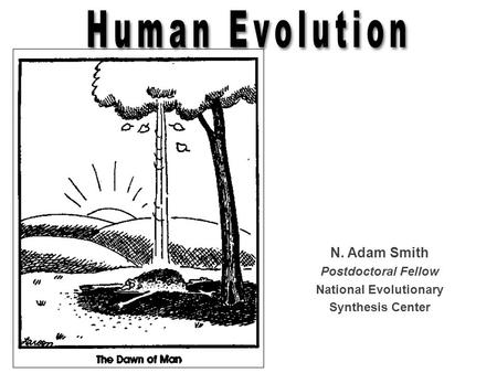 National Evolutionary