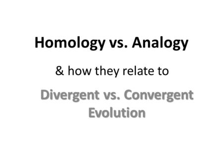Homology vs. Analogy Divergent vs. Convergent Evolution & how they relate to.