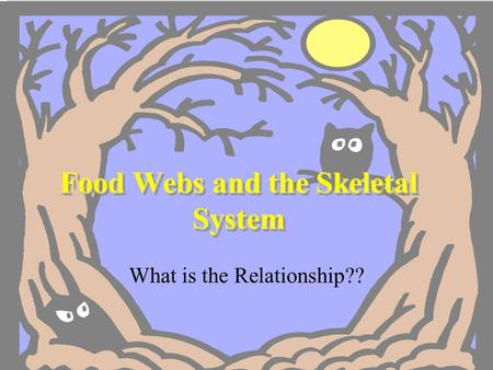 Food Webs and the Skeletal System