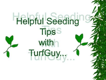 SEEDING YOUR LAWN It's best to seed your lawn in the fall, if possible. Of course, lawn seed can be sown at other times of the year. But fall is the ideal.