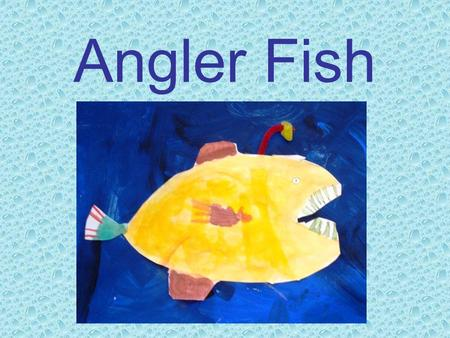 Angler Fish. The Angler fish lives deep down at the bottom of the ocean.