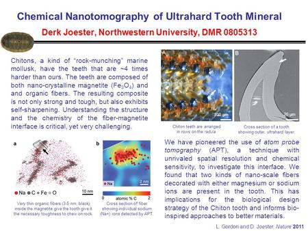 "Chemical Nanotomography of Ultrahard Tooth Mineral Derk Joester, Northwestern University, DMR 0805313 200 µm 20 µm Chitons, a kind of ""rock-munching"""