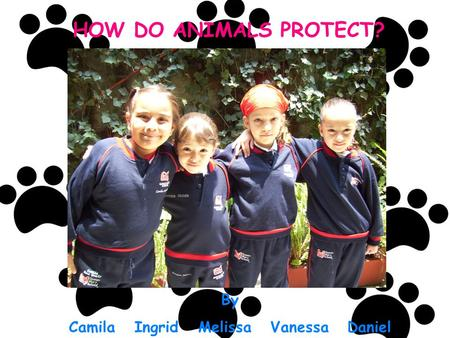 HOW DO ANIMALS PROTECT? By Camila Ingrid Melissa Vanessa Daniel.