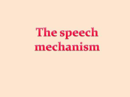 The speech mechanism.