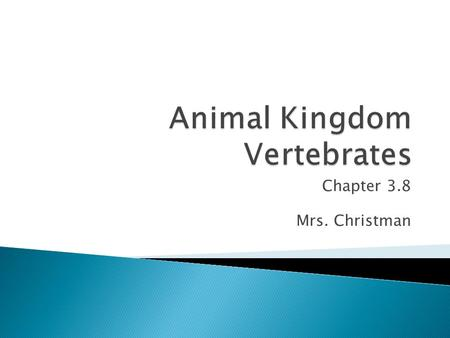Animal Kingdom Vertebrates